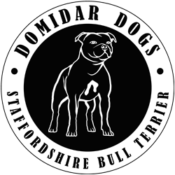 Logo DOMIDAR DOGS Kennel